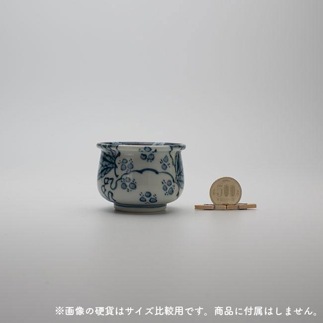 size_500_hikaku